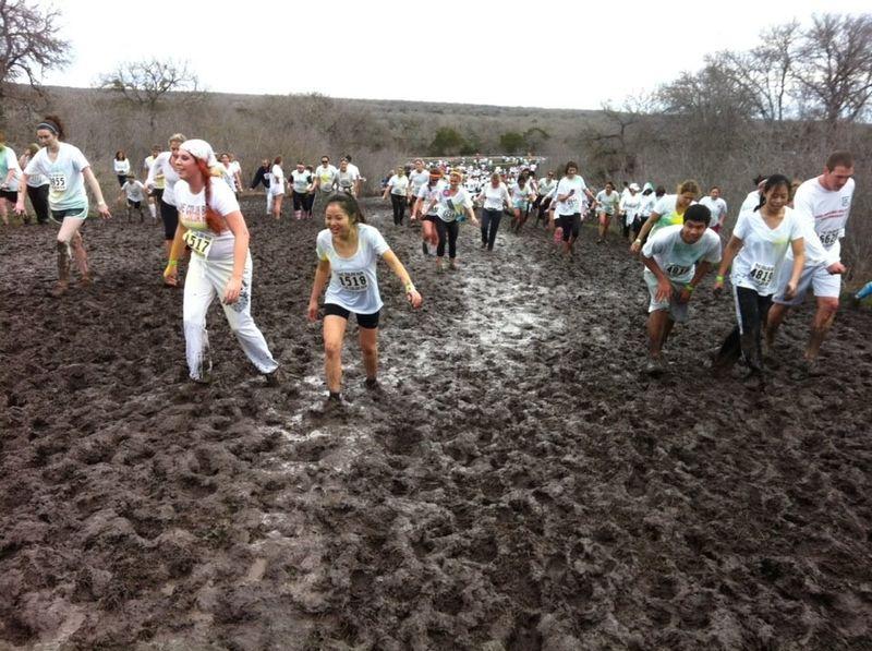 Color Run Course